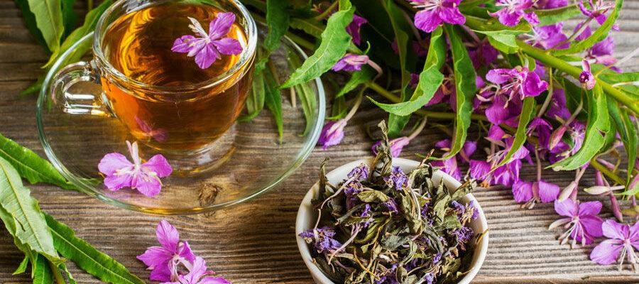 Копорский, или иван-чай